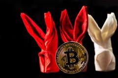 隐藏货币金子Bitcoin, BTC, Bitcoin宏观射击铸造w 免版税库存图片