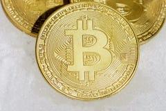隐藏货币bitcoin三枚硬币在白色雪说谎 免版税图库摄影