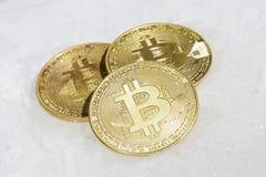 隐藏货币bitcoin三枚硬币在白色雪说谎 免版税库存照片