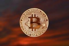隐藏货币bitcoin正面在红褐色的美好的背景的 免版税库存照片