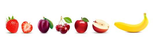 隔绝在白色被设置的背景现实果子象 草莓、苹果计算机、李子、香蕉和樱桃 库存图片