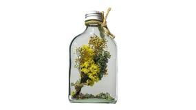 隔绝在平的草瓶的干燥花在白色背景 库存照片
