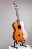 隔绝在灰色声学吉他 免版税库存图片