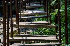 障碍桩的梯子 免版税库存照片