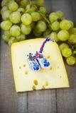 障碍物,在乳酪的荷兰人障碍物 免版税库存照片