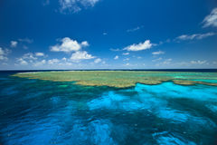 障碍蛤蜊从事园艺极大的礁石 免版税库存图片