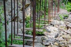 障碍训练的梯子 免版税库存照片