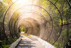隧道光和自然 免版税库存图片