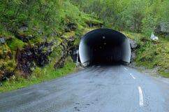 隧道开头 免版税库存照片