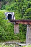 隧道通过火车的山 库存图片