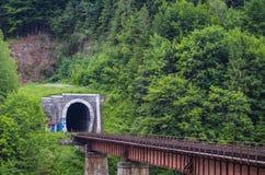 隧道通过火车的山 图库摄影