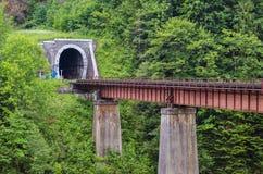 隧道通过火车的山 免版税库存图片