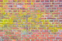 难看的东西与红色老砖块的墙壁背景 免版税库存照片
