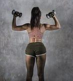 难看的东西体育广告年轻运动妇女样式画象有举行在健身trainin的强的后面和适合的身体的哑铃 免版税图库摄影