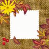 难看的东西包装材料与空的卡片的秋天背景 免版税库存照片