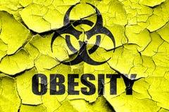 难看的东西破裂的肥胖病概念背景 免版税库存图片