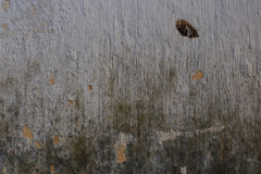 难看的东西bacground被构造的腐朽的墙壁 库存图片