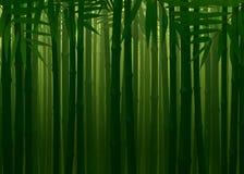 难贯穿的竹森林春天秋天纹理背景 库存照片