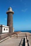 黄雀色费埃特文图拉岛海岛西班牙 免版税库存图片