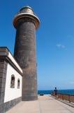 黄雀色费埃特文图拉岛海岛西班牙 库存图片