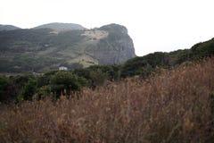 黄雀色gomera海岛海岛横向被看见的tenerife 图库摄影