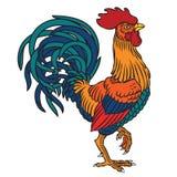 雄鸡的传染媒介例证 库存图片