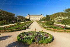 雅尔丹des Plantes巴黎 库存图片