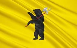 雅罗斯拉夫尔州,俄罗斯联邦旗子  免版税库存照片