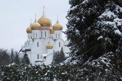 雅罗斯拉夫尔市,俄罗斯- 2016年11月09日:假定的大教堂 库存图片