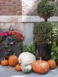 雅致的秋天装饰 库存照片