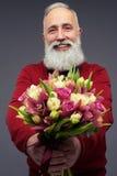 集中于有胡子的gen给的新鲜的郁金香花束  库存照片