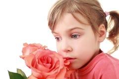 集中的女孩大玫瑰色气味是 库存图片