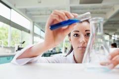 集中的科学学员倾吐的液体 免版税库存照片