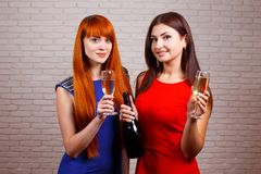 集会和敬酒饮料的两个朋友 愉快的少妇toas 库存图片
