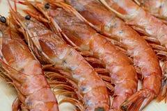 集合与头和长的爪特写镜头的海纤巧大可口未经治疗的海螯虾 库存图片