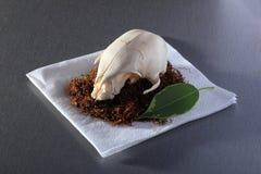 集合切开了鸟的烟草、在餐巾的头骨和叶子在桌上 免版税图库摄影