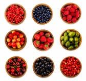 集合各种各样的莓果 草莓、无核小葡萄干、樱桃、莓、鹅莓和越桔 免版税库存图片