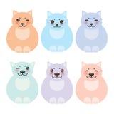 集合开会滑稽的肥胖猫,在白色的淡色 库存图片