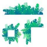 集合热带异乎寻常的密林绿色留下并且种植模板 皇族释放例证