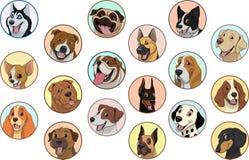 集合纯血统狗 向量例证