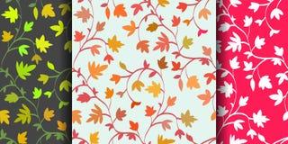 集合:3与分支和叶子,抽象纹理,不尽的背景的无缝的花卉样式 也corel凹道例证向量 免版税库存图片
