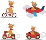 集合-与围巾的逗人喜爱的鹿在运输 免版税库存图片