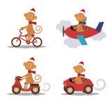 集合-与围巾的逗人喜爱的猴子在运输 免版税图库摄影