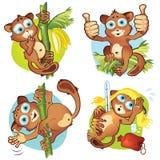 集合1猴子tarsiers 图库摄影