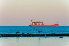 集装箱船在有鸟和反射的海洋 免版税库存照片