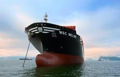 集装箱船MSC站立在路的Meline在船锚 不冻港海湾 东部(日本)海 22 07 2015年 免版税库存图片