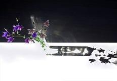 集水量的花是蓝色的 库存照片