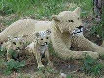 雌狮和她的崽 免版税库存图片