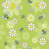 Bees_daisies 免版税库存图片