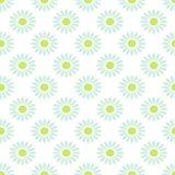 雏菊春黄菊传染媒介无缝的样式 库存照片